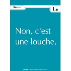 """Réponse """"Arbitraire de la langue"""""""