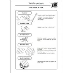 """Exemple de fiche """"Activité pratique"""""""
