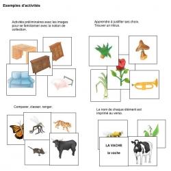 Exemple d'activités